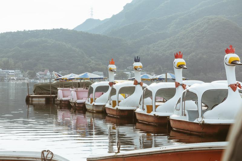 スワンボートが並ぶ湖