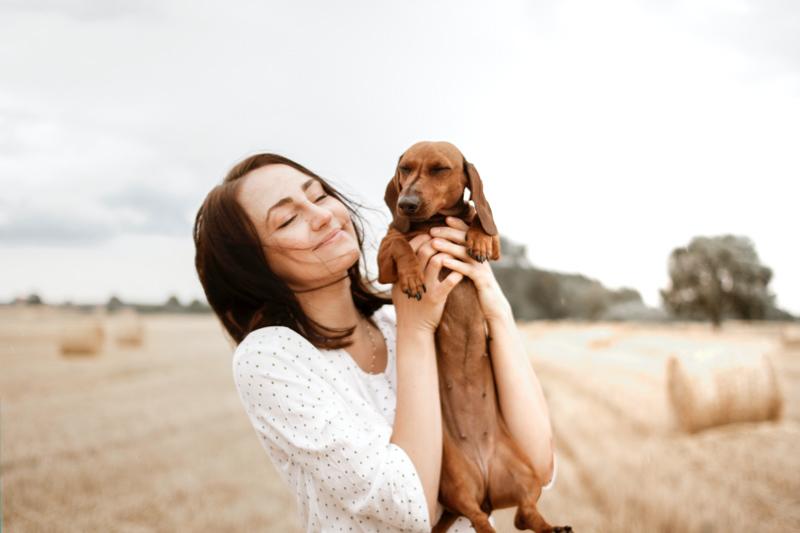 可愛らしい茶色のダックスフントを抱き上げて笑顔の女性
